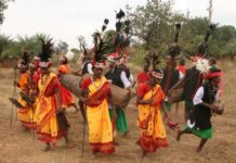 Tribal Dance & Music in Chhattisgarh
