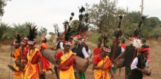 Tribal Dance Music in Chhattisgarh