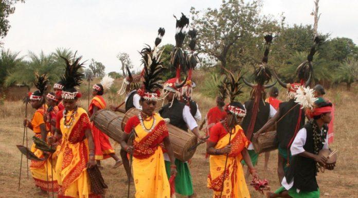 Tribal Dance & Music in Chhattisgarh