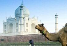 Agra - Uttar Pradesh
