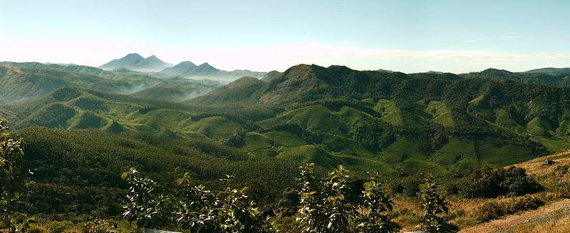 Munnar – The Hill Station of Kerala