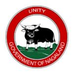 Nagaland Flag