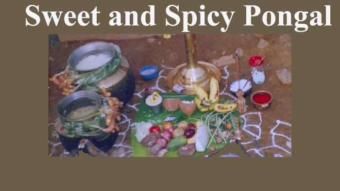 Sweet and Spicy Pongal Recipe