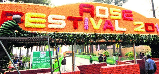Chandigarh Rose Festival