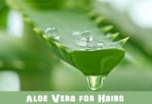 Aloe vera for hairs