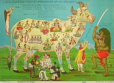 Why Cow in India are Considered Holy Animal?