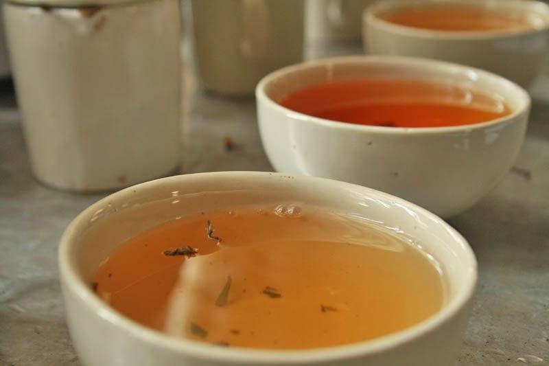 Darjeeling Tea – Champagne of Teas
