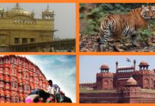 India in November