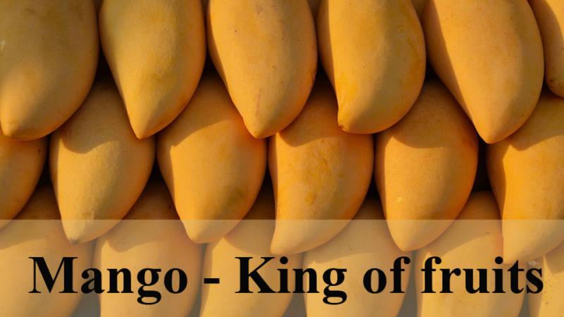 Mango | Mango Health Benefits