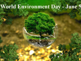 World Environment Day‬