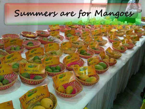 International Mango Festival