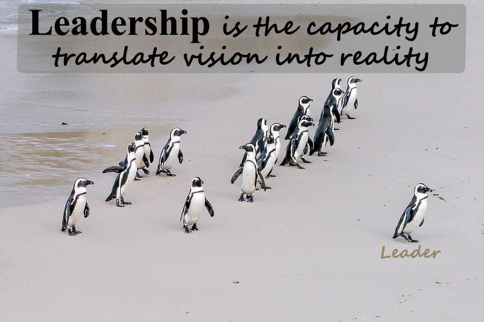 What Are Leadership Skills