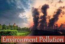 Environment Pollution