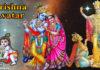 Krishna Avatar