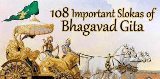 Bhagavad Gita Slokas