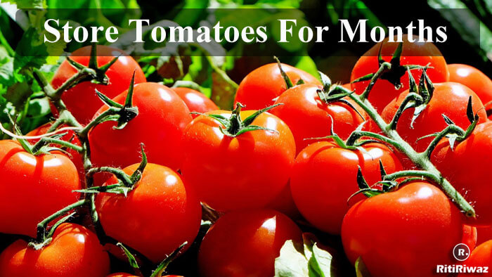 How To Store Tomatoes For Months