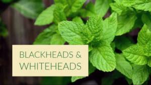 Blackheads & Whiteheads