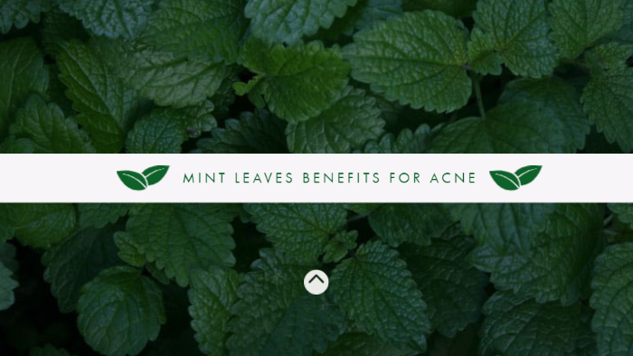 Mint Leaves Benefits for Acne