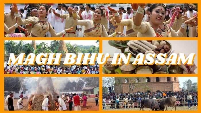 Magh Bihu |  Bhogali Bihu Festival
