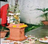 Odisha new year