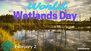 World Wetlands Day