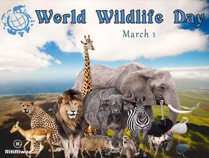 World Wildlife Day – 3rd March