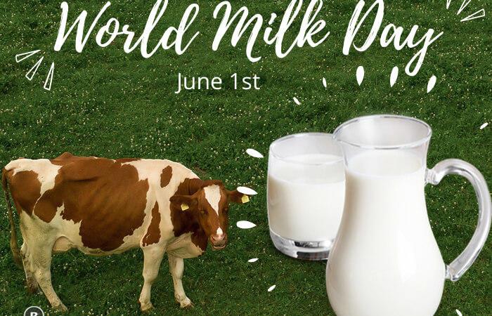 World Milk Day – June 1st