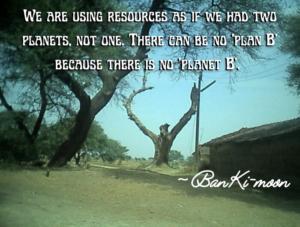Van Mahotsav quote