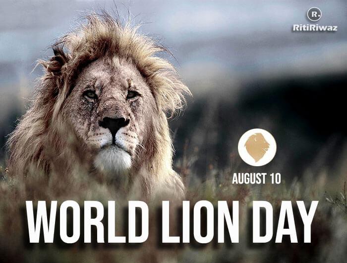 World Lion Day – 10 August